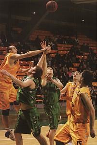 2006 m foto2
